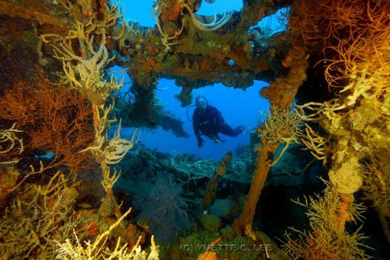 black-island-wreck-