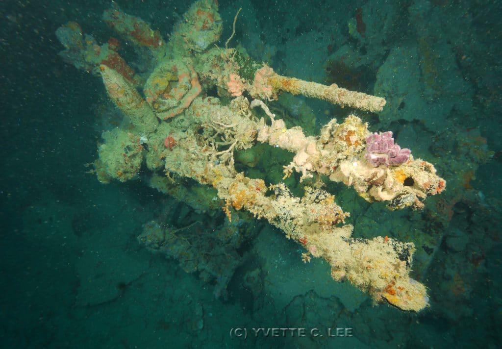 akitsushima wreck dive